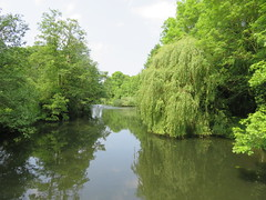 UK - Buckinghamshire - Near Denham - Denham Country Park (JulesFoto) Tags: uk england clog centrallondonoutdoorgroup buckinghamshire denham denhamcountrypark