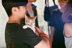 (LS 's film world) Tags: leica cute cat 85mm 400 f2 m3 xtra jupiter9