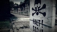 Una volta alla morte dice Taci ormai (carlini.sonia) Tags: sonia auschwitz polonia deportati olocausto guerra sterminio persone gente uomini donne bambini terrore campodisterminio