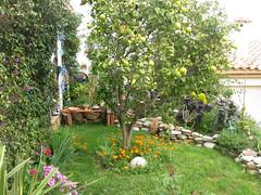 Im Garten 004 (wilhelm.haardt) Tags: antjes blumen peniscola imgarten antjesblumenpracht