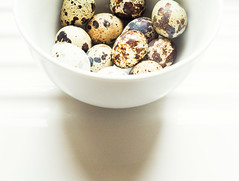 Quail Eggs (bjg_snaps) Tags: eggs quaileggs baking afternoonlight white mottled speckled fragile tiny