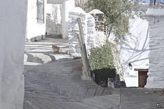 Entre el cielo y el suelo. (elojeador) Tags: reja casa calle puerta gato farol cemento fachada valla capileira lasalpujarras elojeador contendenciaaquedarmecalvo pedrogrullo