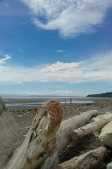 White Rock beach today.... (Beeke...) Tags: ocean canada bc driftwood whiterock lowtie