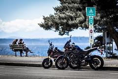 Gromby meets an FZ-09 (jetcitygrom) Tags: seattle park street signs tree beach canon bench bay motorbike sound alki motorcycle yamaha parked editing elliot puget grom 125cc lightroom 6d msx 847cc msx125 fz09