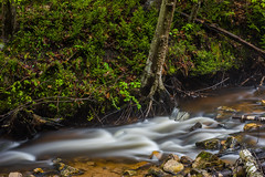 DSC_5036 (David W. Behrens) Tags: michigan puremichigan upperpeninsula water cutriver rapids rocks longexposure may 2016 nikon d810 lakemichigan