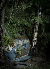 skrot10 (dovlindphoto) Tags: old car wreck rusty moody ww nature cemetery sweden värmland dovlind dovlindphoto pentax k3