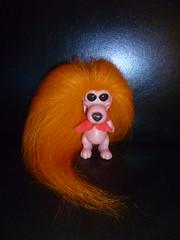 Latest RDF Dog Troll 1967 (trollcatch22) Tags: rdf dog troll 1967