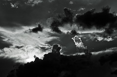Wolken (Patrick Z.) Tags: light sunset summer sky blackandwhite bw cloud sun white black bird beautiful clouds germany deutschland evening abend licht und fantastic nikon raw glow sonnenuntergang view bright sommer great natur north norden hell himmel bn explore environment sw thunderstorm bremen aussicht nikkor northern sonne kontrast gewitter schwarz sonnenstrahlen vogel umwelt norddeutschland szene hitze weis strahlen scheinen schwarzweis quellwolken