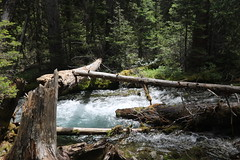 Karst springs Alberta Canada (davebloggs007) Tags: lake trails springs past karst watridge