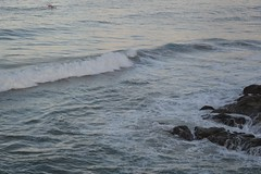 DSC_0079 (JP98AUS) Tags: beach scenery nsw water sunset