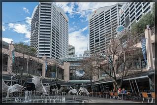 Sydney 20