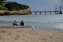 Iman & Iris (@jailanish) Tags: family greatoceanroad holidays roadtrip schoolholidays australia