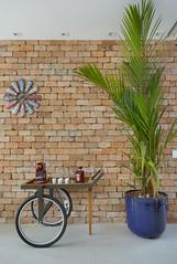 dicas_Amanda_Miranda_Niteroi_arquiteta_dicas_arquitetura (capitaozeferino) Tags: arquitetura amanda miranda dicas de niteroi mais verde dentro casa parede cinza com identidade