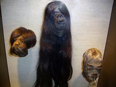 Is This the Real Life? (Hydra5) Tags: ontariosciencecentre thescienceofripleysbelieveitornot shrunkenhead