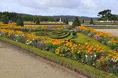 VERSALHES - Frana (JCassiano) Tags: flowers france flores garden de europa europe do frana palace versailles jardim midi chteau palcio versalhes