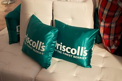 Driscoll's Pillows (Marisa | Food in Jars) Tags: strawberries raspberries blackberries blueberries berrytour driscollsberries berrybloggers