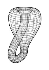 Klein Bottle Illustration (KNEE JERK) Tags: hot soup 3d bottle klein illustrator knee 4d moebius jerk