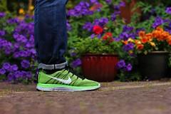 Nike Flyknit One+ (MAYOR91) Tags: one sneakers nike sneaker runners lunar sneakerhead nikerunning wdywt womft nikeflyknit flyknit