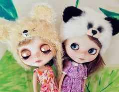My two sweethearts