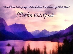 Psalm 102:17 nlt (snapnpiks) Tags: life new love cup church true rock easter born high truth heaven king christ god shepherd spirit brother father ghost religion pray jesus lord christian mount holy moses again lamb bible alive commandments messiah risen salvation promise abba sanctuary tabernacle nations sabbath blessed redeemer righteousness al