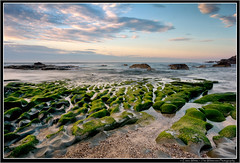 Green Ripples (Emma White ( ... somewhere ... )) Tags: ocean longexposure sea sky seascape beach water clouds sunrise newcastle moss sand nikon rocks long exposure nsw grooves geology contours d7100 thewhiteview