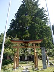 Sugakawa shrine (mega_midget_racer) Tags: blue trees sky mountain tree green nature bike forest bmw motorcycle  touring gravel r1200gs