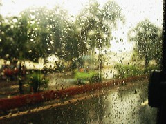 rain (Sarahreii) Tags: rain drops day rainy bagyo