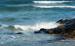 1-10-2013 (Copperhobnob) Tags: aberdeenshire stcombsbeach