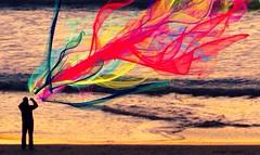 Flowpaper (DeeAshley) Tags: cameraphone california ca summer favorite usa art beach digital canon landscape photography photo monterey google interesting flickr pretty texas foto view arte unitedstates artistic photos random edited tx awesome perspective creative archive wanderlust artsy mobilephone carmel archives bayarea vista northamerica iphoto variety dslr interesante grapevine edit 5c apps hartnett iphone g11 g12 gseries perspectivo aremac iphoneart fotografía iphoneography iphoneedit gogoloopie deeashley dionneashley dionnehartnett shehadpotential flowpaper downloadedjune2015