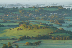 Morning light (Mukumbura) Tags: uk morning autumn trees light england mist fall beauty fog sunrise landscape outdoors dawn countryside october scenery shadows somerset hills tranquil daybreak gettyimages priddy somersetlevels peacefulscene mendiphills deerleap welcomeuk