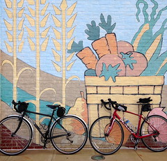 Whole Foods Mural and Bikes (Mr.TinDC) Tags: vienna bike bicycle virginia mural ride murals bikes wholefoods bicycles va biking surly specialized bikerides iphone