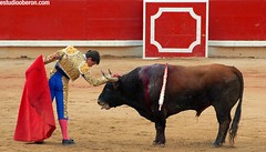 "San Fermín Plaza Toros Bull Ring 27 <a style=""margin-left:10px; font-size:0.8em;"" href=""http://www.flickr.com/photos/116167095@N07/12269795473/"" target=""_blank"">@flickr</a>"
