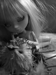 Garden Eden. (Mlle Camille.) Tags: doll eden junplanning pulliplatte mllecamille