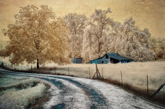 Down The Lane (shutterclick3x) Tags: barn ir countryside farm infrared backroads fauxcolor frankloose