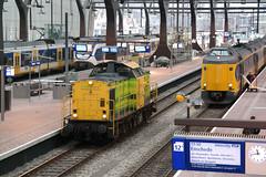 Rotterdam Centraal Treinen
