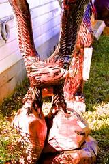 Eagle Carving (I Love Elizabeth Warren - LarryJay99 ) Tags: wood texture outside daylight florida westpalmbeach s carving deadwood southfloridafair artscrafts 2013 canonefs18135mmf3556is