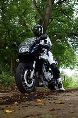 BMW F 800 S (Stefan Jrgensen) Tags: road black nature bike germany deutschland sony motorbike bmw motorcycle schleswigholstein motorrad norddeutschland alpinestars northerngermany flm a700 f800 2013 f800s bmwf800s dslra700 supertechr alpinestarssupertechr