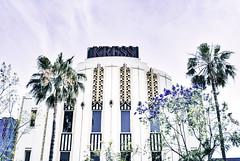 Kress (Carrie McGann) Tags: losangeles interesting nikon purple palmtrees hollywood artdeco hollywoodblvd deco kress 050316 jacarandatrees