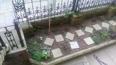 Stepney Green court Gardens (Carol B London) Tags: gardens e1 sgc ids stepney londone1 pavingslabs stepneygreen