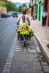 Bike lanes in Oaxaca