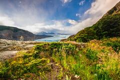 Grey Glacier (macsbruj) Tags: chile patagonia landscape nationalpark paisaje paisagem torresdelpaine magallanes parquenacional