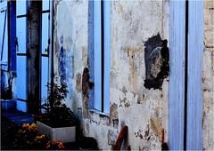 QZ 471 (cadayf) Tags: blue house 33 bleu shutter maison couleur gironde volet