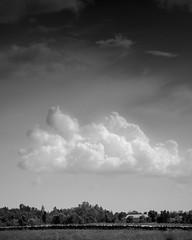 Srie sur les nuages | Ile d'Orlan (Fabrice Gaetan) Tags: white black noir universit nb nuage et blanc