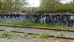 Niter and Bower (Randall 667) Tags: street urban art train island graffiti artist exploring tracks east providence crew writer taggers rhode dip nite martian bower artworks outcast the niter