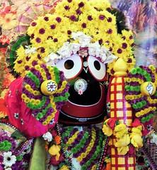 DSCN1208 (ursusdave) Tags: india festival hare baltimore parade krishna chariot ursusdave davidrobertcrews davidrobertcrews{akaursusdave}