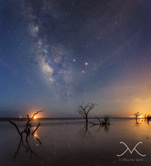 Botany Bay Beach Panorama Before The Sun Comes Up (Mike Ver Sprill - Milky Way Mike) Tags: ocean life new travel portrait sky panorama mist reflection tree art beach sc mike water beautiful night yard forest self way stars dead island photography death bay michael amazing sand nikon long exposure photographer angle outdoor pano south tide explorer low great fine wide salt eerie panoramic best creepy explore driftwood astrophotography plantation midnight jersey carolina astronomy bone serene marsh botany ever magical milky deadwood mv ver based edisto d800 selfie 1424 sprill versprill