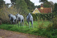 Photo of Equine Identical Cluster