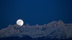 Lever de Lune au dessus de Belledonne (Olivier 38) Tags: moon mountain snow night montagne lune landscape nightscape neige paysage nuit moonset leverdelune paysagedenuit
