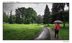 P6080133 (Roberto Silverio) Tags: italy rain torino piemonte motorshow penf parcodelvalentino salonedellauto olympuscamera zuikolens robertosilverio