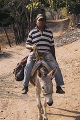 Conversaciones Mentales de un Viajero (SerCorzo) Tags: sunset portrait man work canon town retrato farm pueblo donkey burro elder viejo hombre seor documental 60d